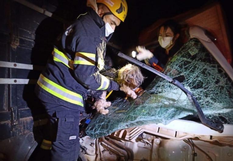 Acidente entre caminhões deixa dois feridos e um morto na BR-050, em Catalão