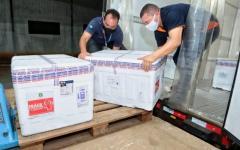 Goiás recebe 119.750 vacinas da AstraZeneca para aplicação da 1ª dose