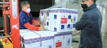 Catalão lidera com um registro de aplicação de 96,76% das doses já recebidas