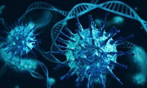 Sequenciamento genético conclui que cepa indiana da Covid circula em Goiânia