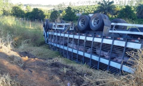 Morador de Catalão fica gravemtene ferido após batida entre carreta e caminhão na BR-262, em Córrego Danta