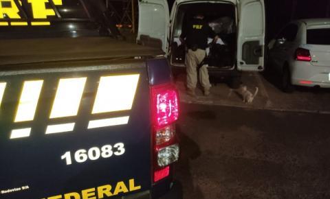 Motorista é flagrado com agrotóxicos falsificados na BR 050, em Catalão